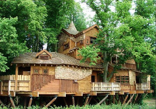 large-tree-house - The Property Blog