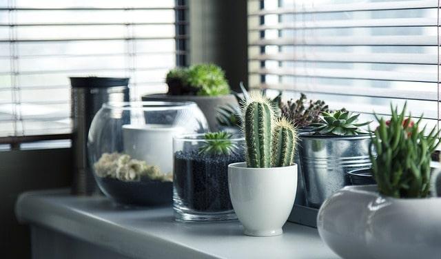 Interior Design - The Property Blog